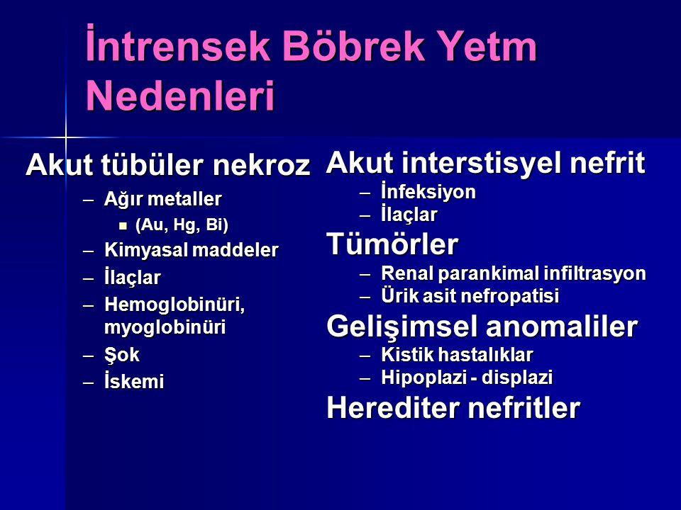Akut tübüler nekroz –Ağır metaller (Au, Hg, Bi) (Au, Hg, Bi) –Kimyasal maddeler –İlaçlar –Hemoglobinüri, myoglobinüri –Şok –İskemi Akut interstisyel n