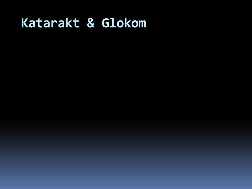 Katarakt & Glokom