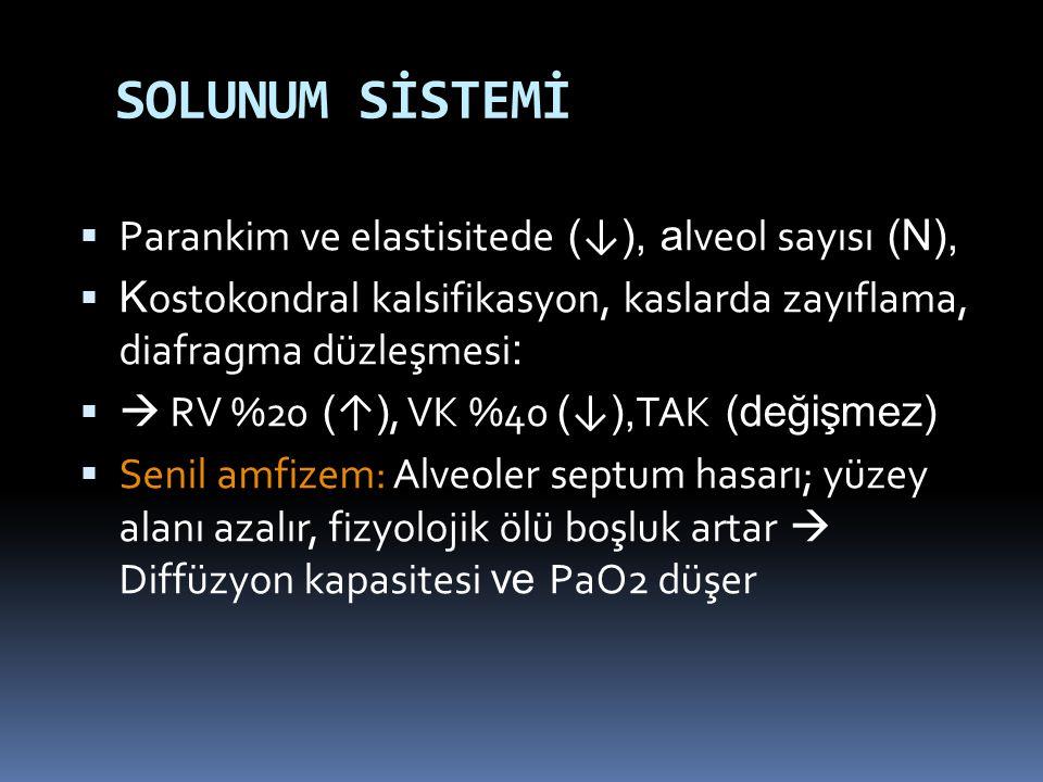 SOLUNUM SİSTEMİ  Parankim ve elastisitede ( ↓ ), a lveol sayısı (N),  K ostokondral kalsifikasyon, kaslarda zayıflama, diafragma düzleşmesi :   RV