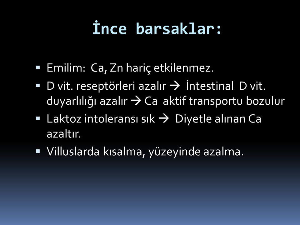 İnce barsaklar:  Emilim: Ca, Zn hariç etkilenmez.  D vit. reseptörleri azalır  İntestinal D vit. duyarlılığı azalır  Ca aktif transportu bozulur 