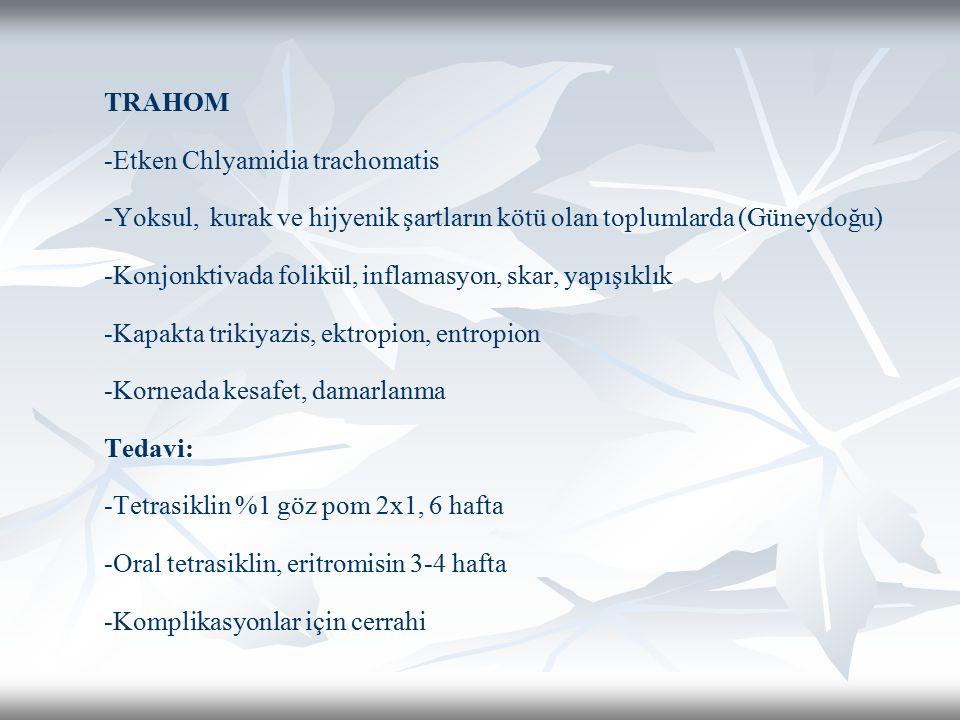 TRAHOM -Etken Chlyamidia trachomatis -Yoksul, kurak ve hijyenik şartların kötü olan toplumlarda (Güneydoğu) -Konjonktivada folikül, inflamasyon, skar,