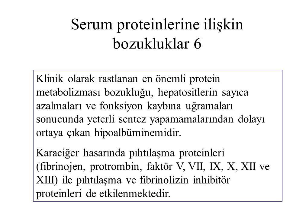 Serum proteinlerine ilişkin bozukluklar 6 Klinik olarak rastlanan en önemli protein metabolizması bozukluğu, hepatositlerin sayıca azalmaları ve fonks