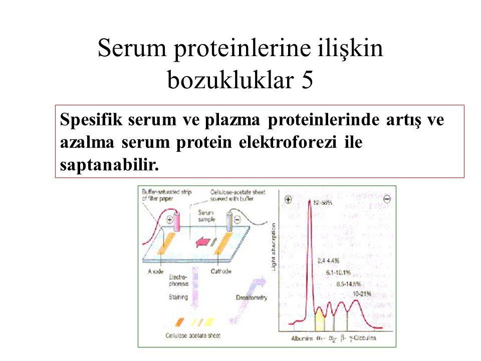Serum proteinlerine ilişkin bozukluklar 5 Spesifik serum ve plazma proteinlerinde artış ve azalma serum protein elektroforezi ile saptanabilir.