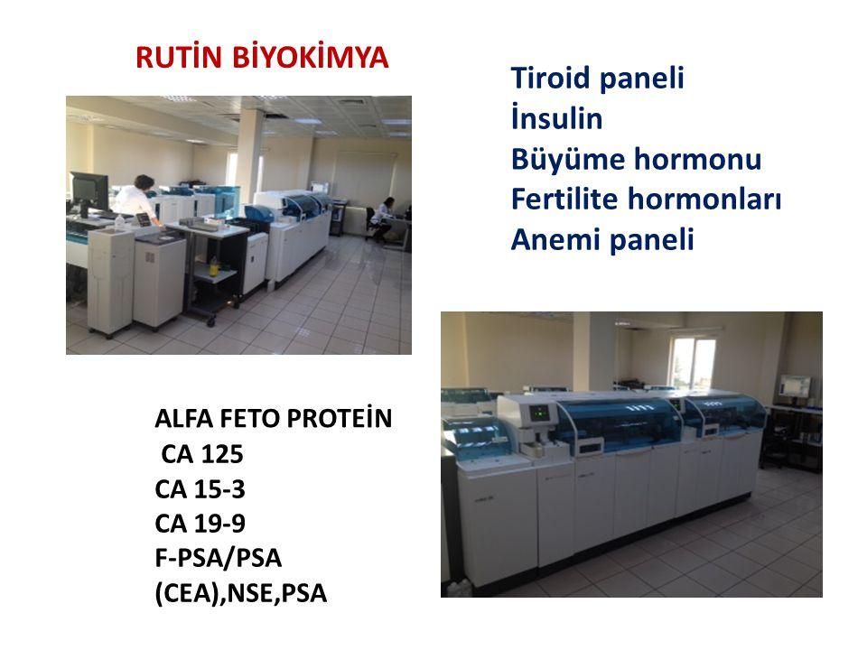 RUTİN BİYOKİMYA Tiroid paneli İnsulin Büyüme hormonu Fertilite hormonları Anemi paneli ALFA FETO PROTEİN CA 125 CA 15-3 CA 19-9 F-PSA/PSA (CEA),NSE,PSA