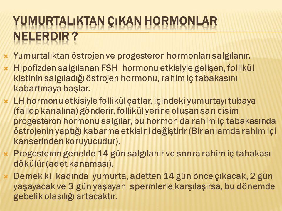  Yumurtalıktan östrojen ve progesteron hormonları salgılanır.  Hipofizden salgılanan FSH hormonu etkisiyle gelişen, follikül kistinin salgıladığı ös