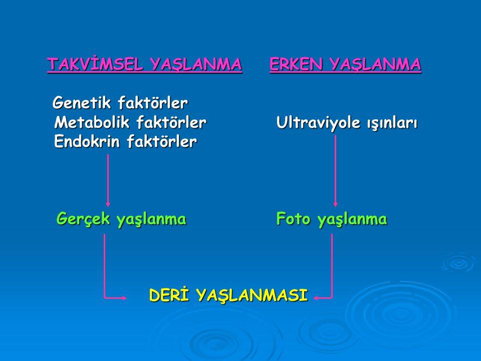 TAKVİMSEL YAŞLANMAERKEN YAŞLANMA Genetik faktörler Genetik faktörler Metabolik faktörler Ultraviyole ışınları Metabolik faktörler Ultraviyole ışınları