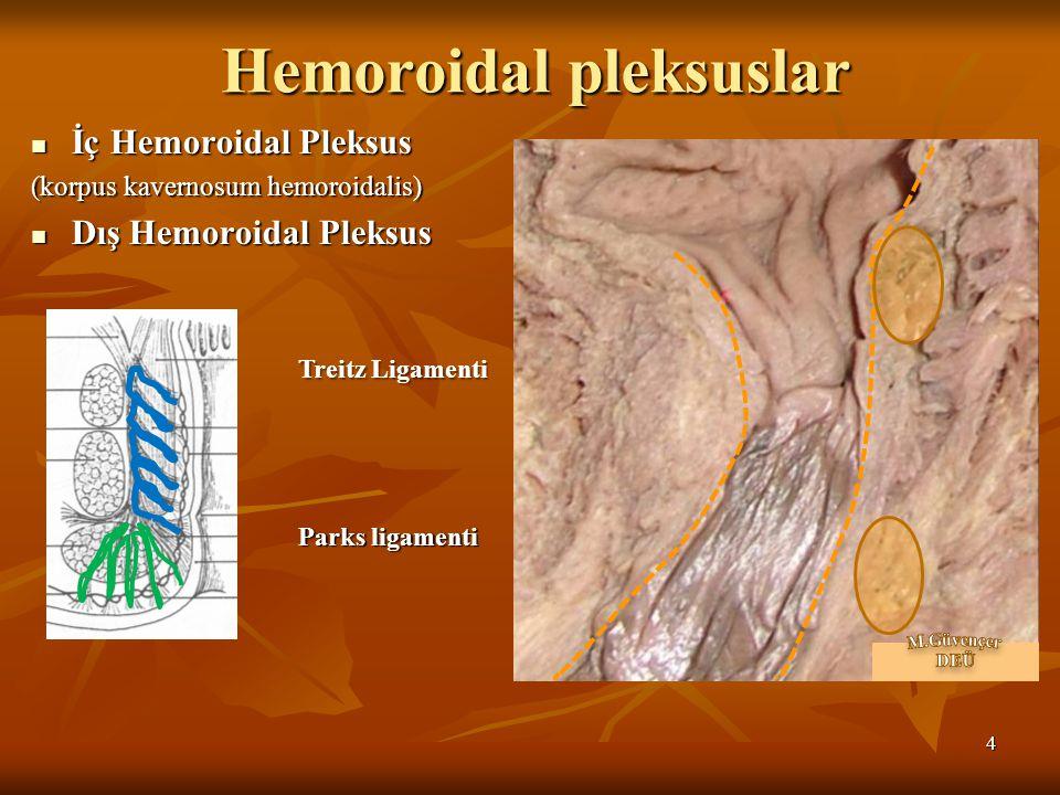 Hemoroidal pleksuslar İç Hemoroidal Pleksus: İç Hemoroidal Pleksus: (korpus kavernosum hemoroidalis) anal kolumna içerisinde submukozada, anal kolumna içerisinde submukozada, 3 adet, 3 adet, v.rektalis superior-v.rektalis media v.rektalis superior-v.rektalis media Pasif inkontinansın önlenmesine katkıda bulunur.
