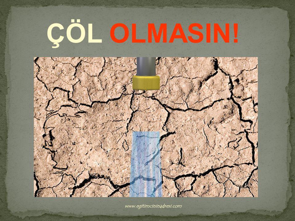 ÇÖL OLMASIN! www.egitimcininadresi.com