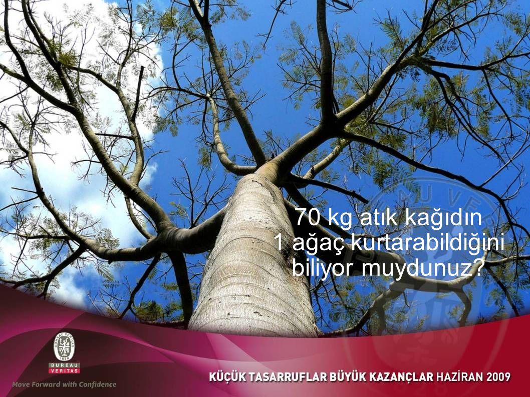 70 kg atık kağıdın 1 ağaç kurtarabildiğini biliyor muydunuz?