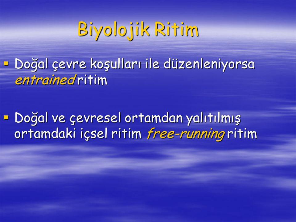Biyolojik Ritim  Doğal çevre koşulları ile düzenleniyorsa entrained ritim  Doğal ve çevresel ortamdan yalıtılmış ortamdaki içsel ritim free-running ritim