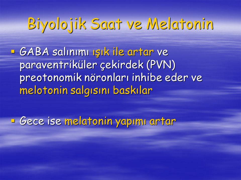 Biyolojik Saat ve Melatonin  GABA salınımı ışık ile artar ve paraventriküler çekirdek (PVN) preotonomik nöronları inhibe eder ve melotonin salgısını baskılar  Gece ise melatonin yapımı artar