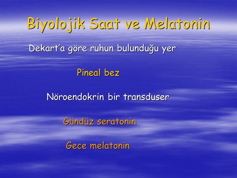 Biyolojik Saat ve Melatonin Dekart'a göre ruhun bulunduğu yer Dekart'a göre ruhun bulunduğu yer Pineal bez Pineal bez Nöroendokrin bir transduser Nöroendokrin bir transduser Gündüz seratonin Gündüz seratonin Gece melatonin Gece melatonin