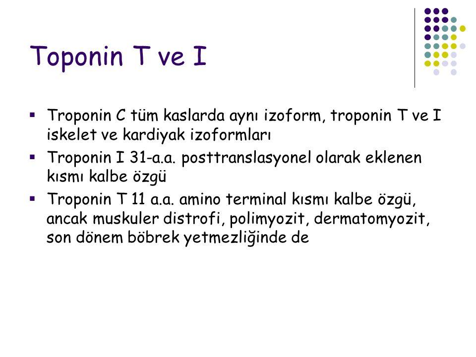 Toponin T ve I  Troponin C tüm kaslarda aynı izoform, troponin T ve I iskelet ve kardiyak izoformları  Troponin I 31-a.a.