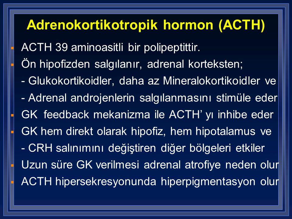Adrenokortikotropik hormon (ACTH)  ACTH 39 aminoasitli bir polipeptittir.  Ön hipofizden salgılanır, adrenal korteksten; - Glukokortikoidler, daha a