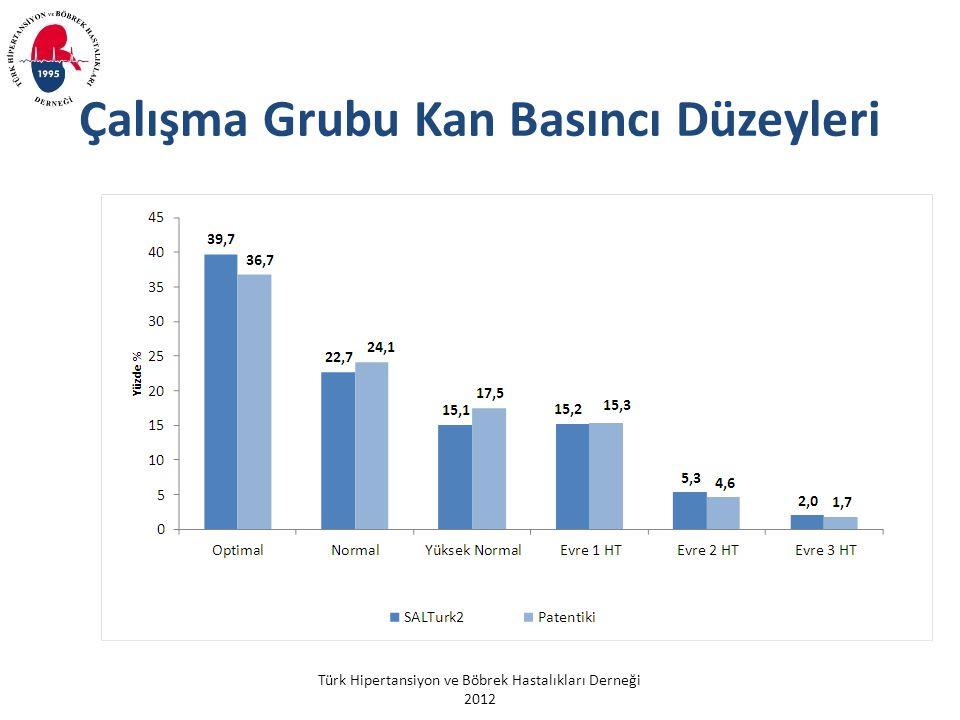 Türk Hipertansiyon ve Böbrek Hastalıkları Derneği 2012 Çalışma Grubu Kan Basıncı Düzeyleri