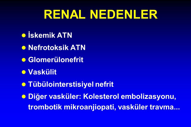 RENAL NEDENLER l İskemik ATN l Nefrotoksik ATN l Glomerülonefrit l Vaskülit l Tübülointerstisiyel nefrit l Diğer vasküler: Kolesterol embolizasyonu, t