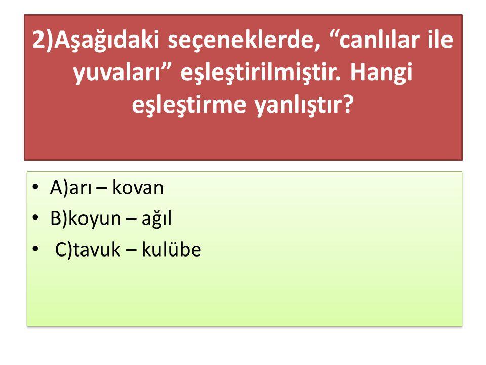 10)Soruları doğru cevaplamak istiyorsan acele etmemelisin.