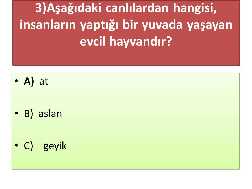 TÜRKÇE TESTİ BİTTİ.