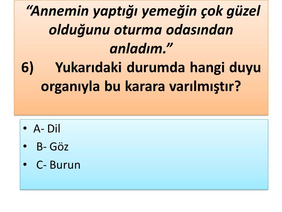 4)Aşağıdaki cümlelerin hangisinde sebep-sonuç ilişkisi kurulmuştur.