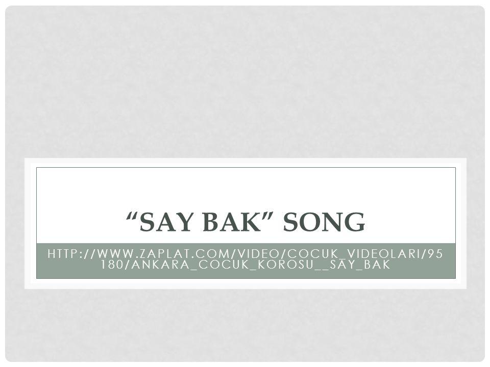 """SAY BAK"" SONG HTTP://WWW.ZAPLAT.COM/VIDEO/COCUK_VIDEOLARI/95 180/ANKARA_COCUK_KOROSU__SAY_BAK"