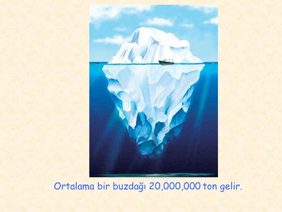 Ortalama bir buzdağı 20,000,000 ton gelir.