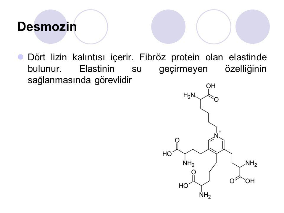 Desmozin Dört lizin kalıntısı içerir.Fibröz protein olan elastinde bulunur.