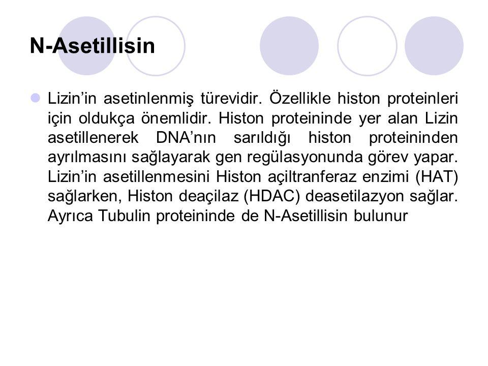 N-Asetillisin Lizin'in asetinlenmiş türevidir.Özellikle histon proteinleri için oldukça önemlidir.
