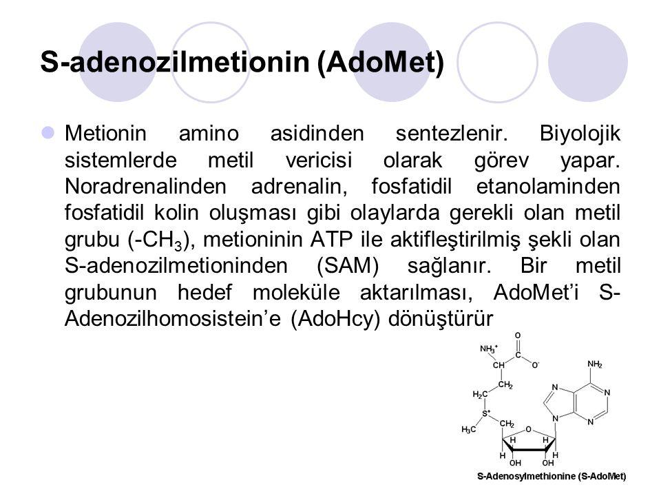 S-adenozilmetionin (AdoMet) Metionin amino asidinden sentezlenir.