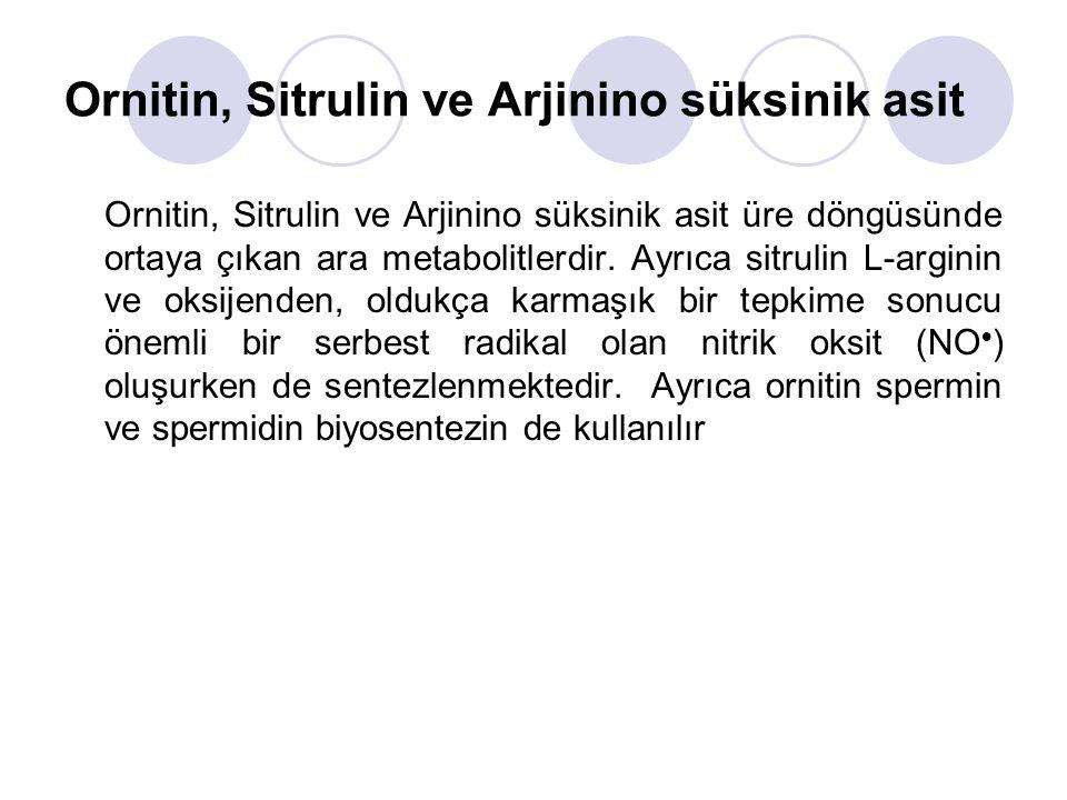 Ornitin, Sitrulin ve Arjinino süksinik asit Ornitin, Sitrulin ve Arjinino süksinik asit üre döngüsünde ortaya çıkan ara metabolitlerdir.