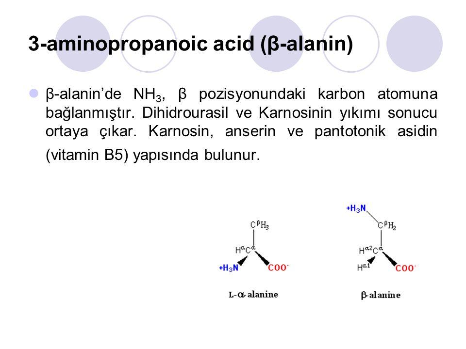 3-aminopropanoic acid (β-alanin) β-alanin'de NH 3, β pozisyonundaki karbon atomuna bağlanmıştır.