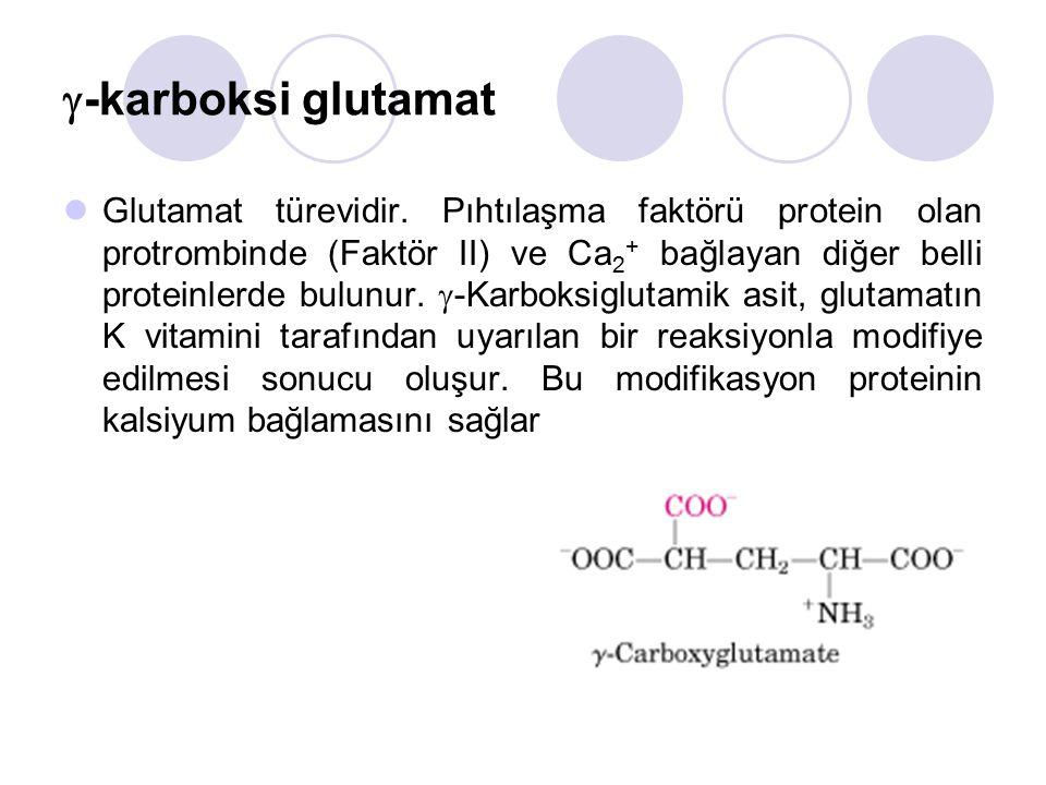  -karboksi glutamat Glutamat türevidir.