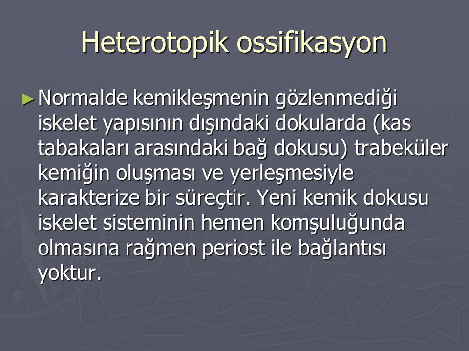 Heterotopik ossifikasyon ► Normalde kemikleşmenin gözlenmediği iskelet yapısının dışındaki dokularda (kas tabakaları arasındaki bağ dokusu) trabeküler
