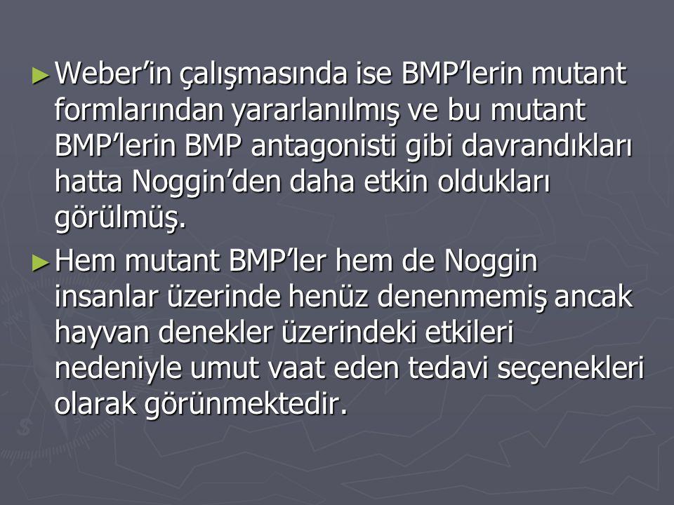 ► Weber'in çalışmasında ise BMP'lerin mutant formlarından yararlanılmış ve bu mutant BMP'lerin BMP antagonisti gibi davrandıkları hatta Noggin'den dah