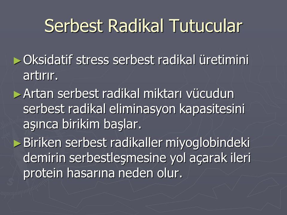 Serbest Radikal Tutucular ► Oksidatif stress serbest radikal üretimini artırır. ► Artan serbest radikal miktarı vücudun serbest radikal eliminasyon ka