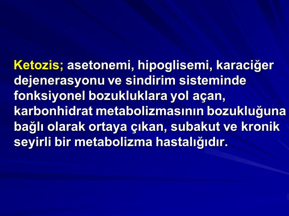 Ketozis; asetonemi, hipoglisemi, karaciğer dejenerasyonu ve sindirim sisteminde fonksiyonel bozukluklara yol açan, karbonhidrat metabolizmasının bozuk
