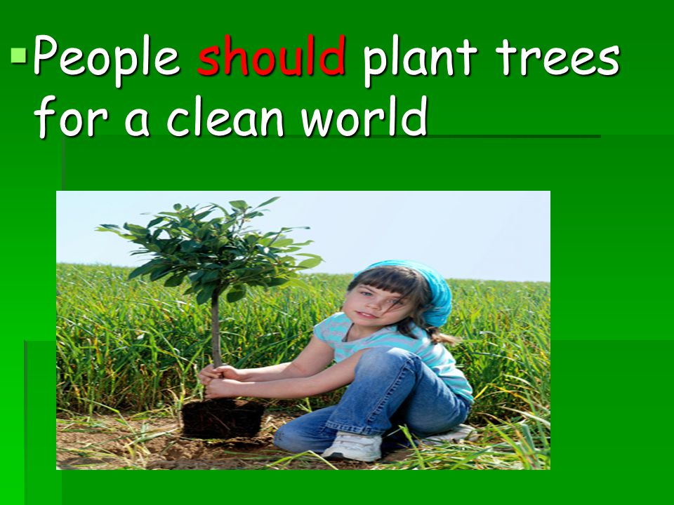  People should plant trees for a clean world