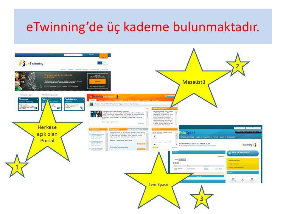 eTwinning'de üç kademe bulunmaktadır. Herkese açık olan Portal 1 2 3 Masaüstü TwinSpace