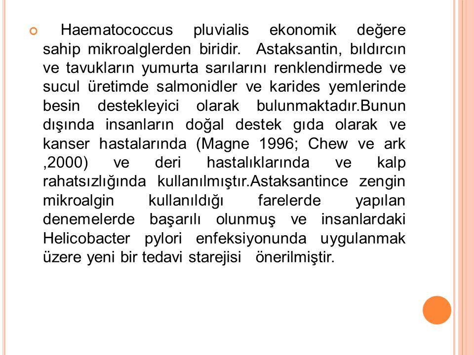 Haematococcus pluvialis ekonomik değere sahip mikroalglerden biridir. Astaksantin, bıldırcın ve tavukların yumurta sarılarını renklendirmede ve sucul
