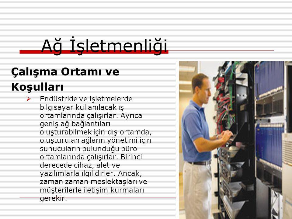 Çalışma Ortamı ve Koşulları  Endüstride ve işletmelerde bilgisayar kullanılacak iş ortamlarında çalışırlar. Ayrıca geniş ağ bağlantıları oluşturabilm