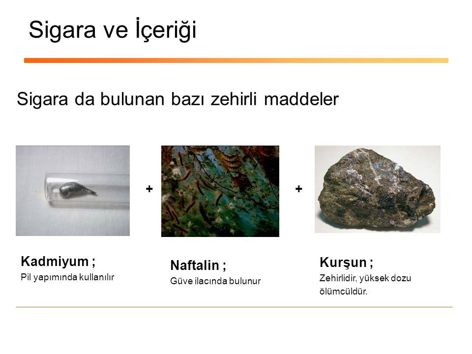 Sigara İstatistikleri Türkiye de Sigara tüketimi sürekli artıyor