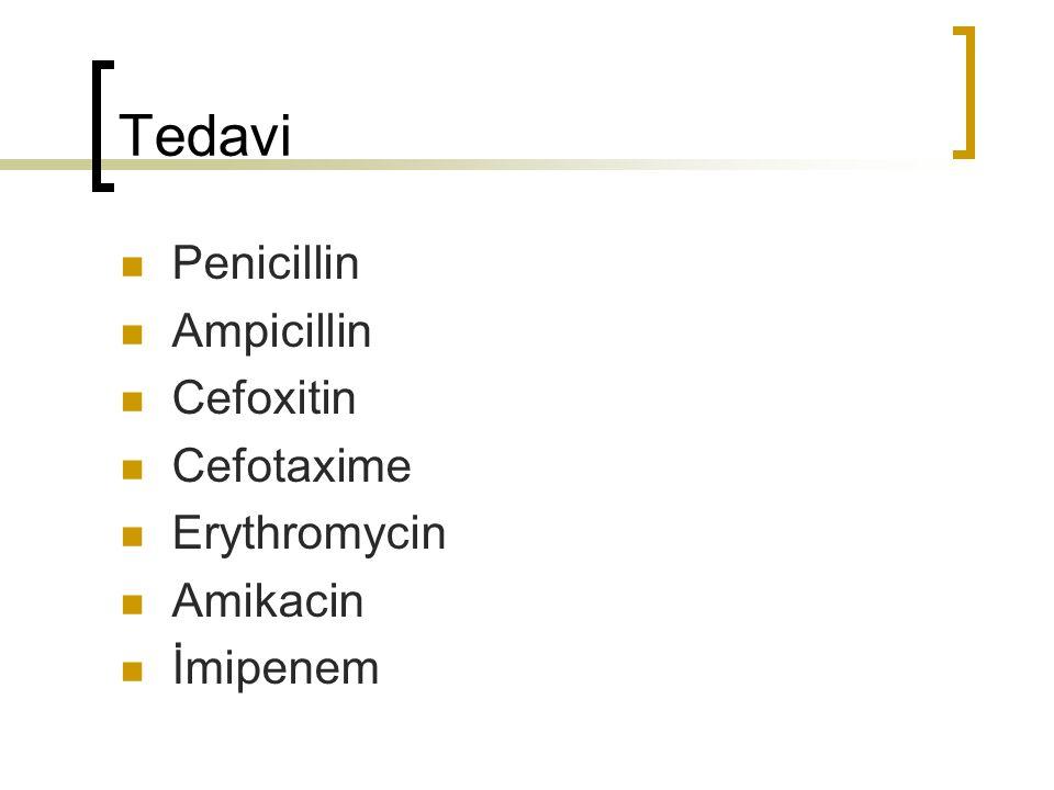 Tedavi Penicillin Ampicillin Cefoxitin Cefotaxime Erythromycin Amikacin İmipenem