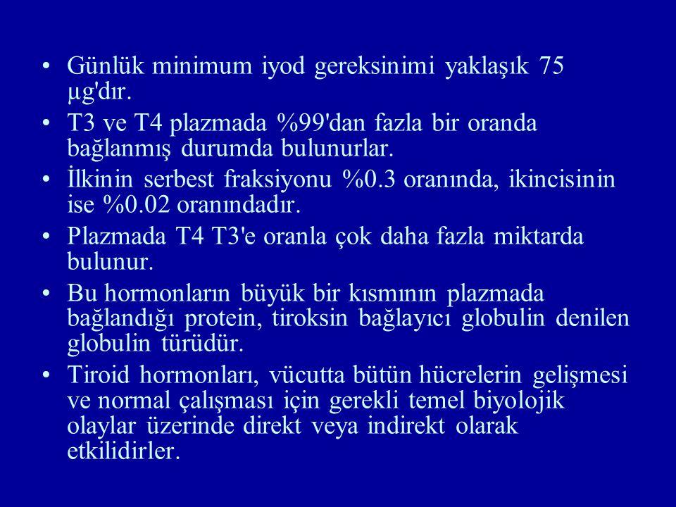 Günlük minimum iyod gereksinimi yaklaşık 75 µg'dır. T3 ve T4 plazmada %99'dan fazla bir oranda bağlanmış durumda bulunurlar. İlkinin serbest fraksiyon
