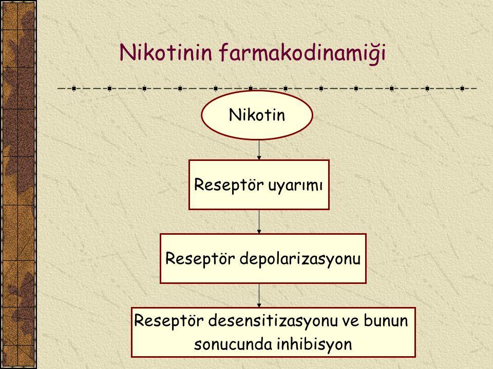 Nikotinin farmakodinamiği Nikotin Reseptör uyarımı Reseptör depolarizasyonu Reseptör desensitizasyonu ve bunun sonucunda inhibisyon