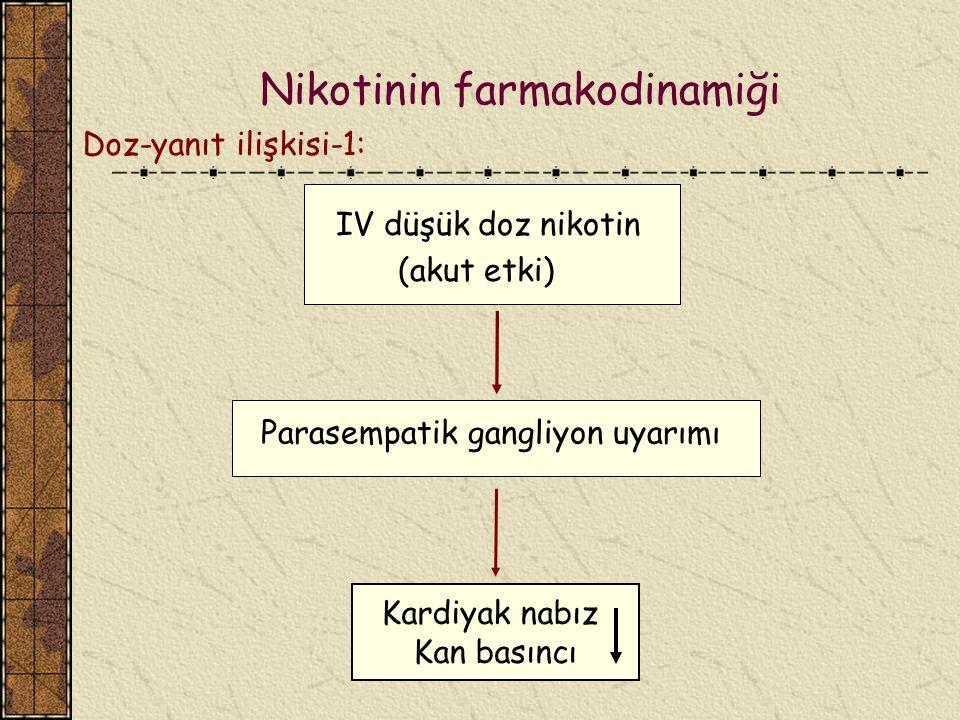 Nikotinin farmakodinamiği IV düşük doz nikotin (akut etki) Kardiyak nabız Kan basıncı Doz-yanıt ilişkisi-1: Parasempatik gangliyon uyarımı