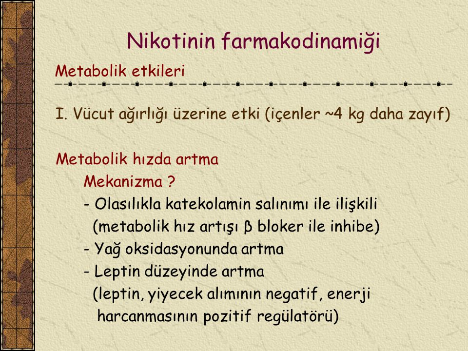 I. Vücut ağırlığı üzerine etki (içenler ~4 kg daha zayıf) Metabolik hızda artma Mekanizma ? - Olasılıkla katekolamin salınımı ile ilişkili (metabolik