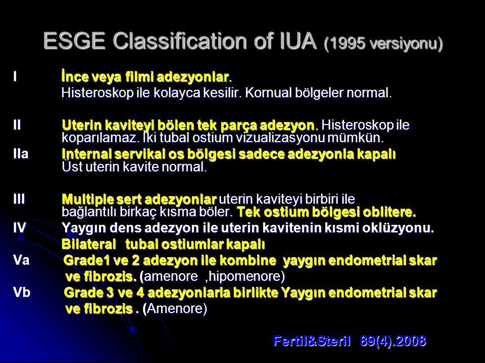 ESGE Classification of IUA (1995 versiyonu) I İnce veya filmi adezyonlar.