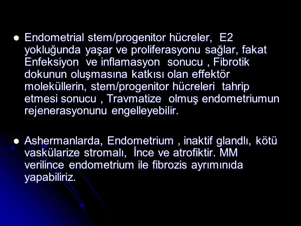 Endometrial stem/progenitor hücreler, E2 yokluğunda yaşar ve proliferasyonu sağlar, fakat Enfeksiyon ve inflamasyon sonucu, Fibrotik dokunun oluşmasına katkısı olan effektör moleküllerin, stem/progenitor hücreleri tahrip etmesi sonucu, Travmatize olmuş endometriumun rejenerasyonunu engelleyebilir.