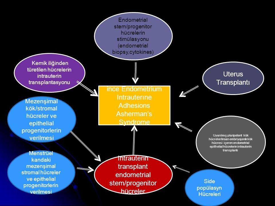 ince Endometrium Intrauterıne Adhesions Asherman's Syndrome Kemik iliğinden türetilen hücrelerin intrauterin transplantasyonu Endometrial stem/progenitor hücrelerin stimülasyonu (endometrial biopsy,cytokines) Uterus Transplantı Uyarılmış pluripotent kök hücreler/insan embriyojenik kök hücresi içeren endometrial epithelial hücrelerin intrauterin transplantı Intrauterin transplant endometrial stem/progenitor hücreler Side popülasyn Hücreleri Menstrüel kandaki mezenşimal stromal hücreler ve epithelial progenitorlerin verilmesi Mezenşimal kök/stromal hücreler ve epithelial progenitorlerin verilmesi