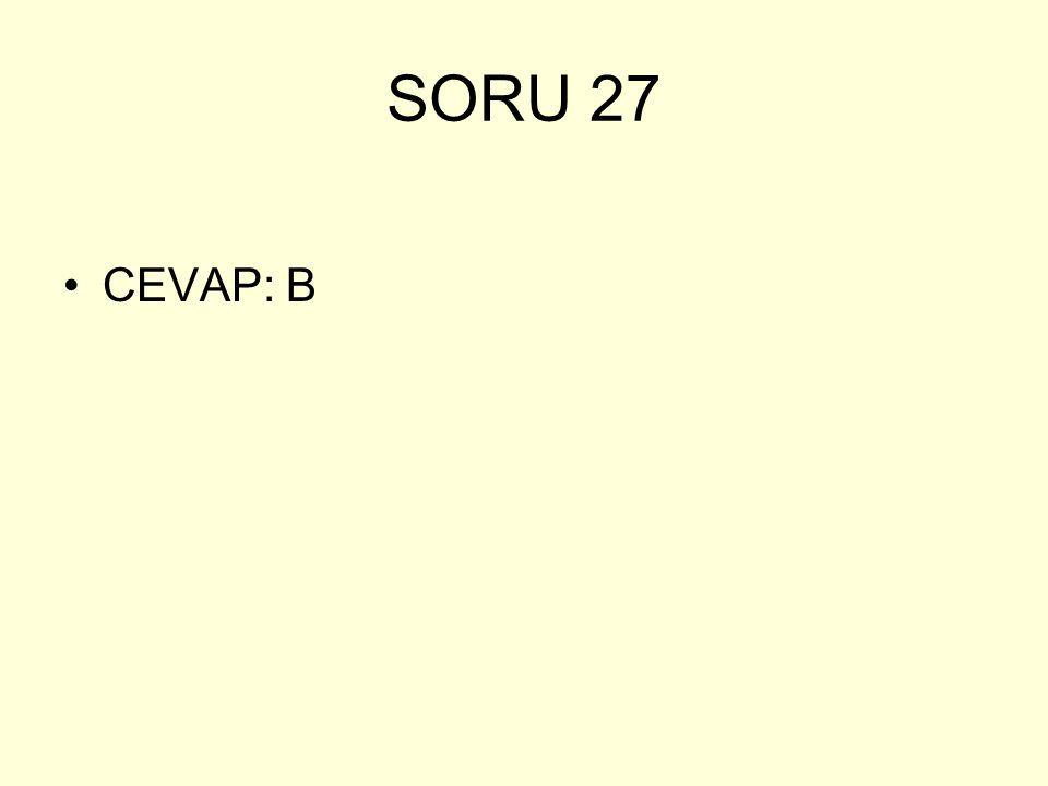 SORU 27 CEVAP: B