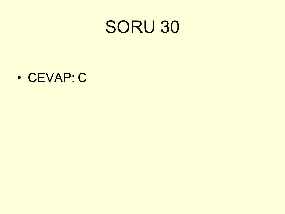 SORU 30 CEVAP: C